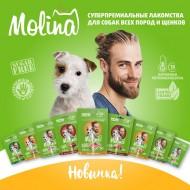 62 - 193 КонтинентЗОО Molina лакомства для собак